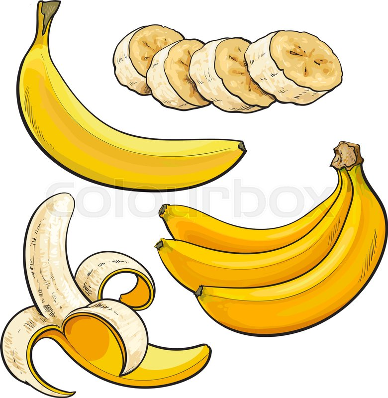 780x800 Sliced, Peeled, Singl And Bunch Of Three Ripe Banana, Sketch Style
