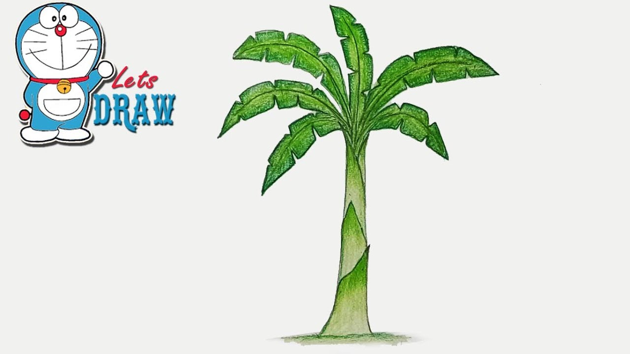 1280x720 How To Draw Banana Tree Step By Step (Very Easy)
