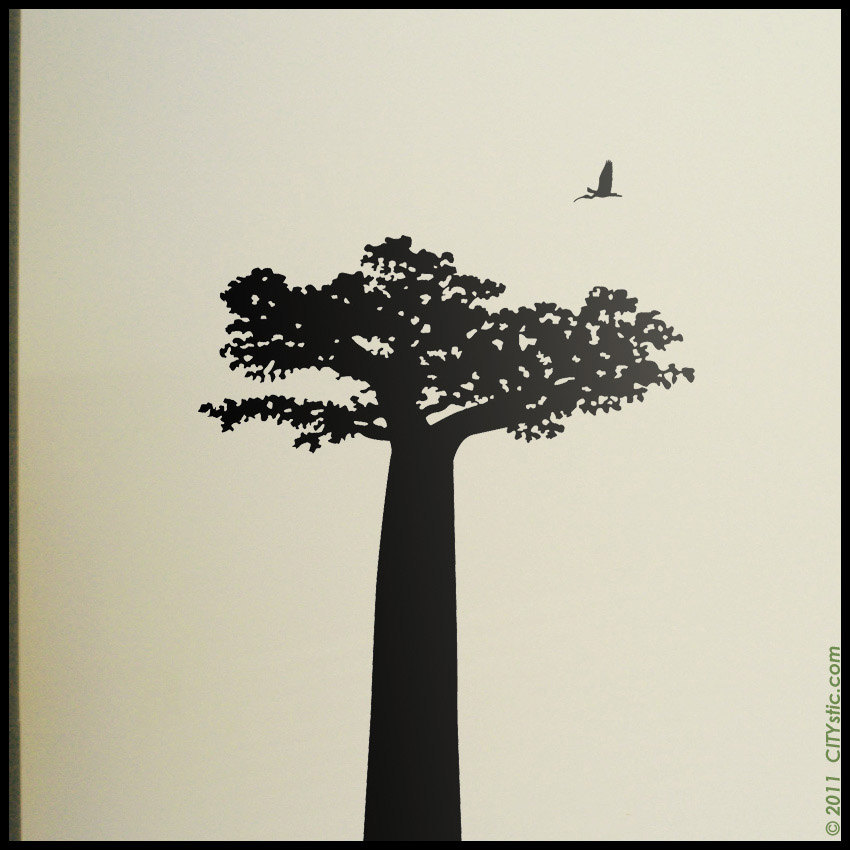 850x850 Baobab Tree From Madagascar With Birds Decal, Lemur Decal