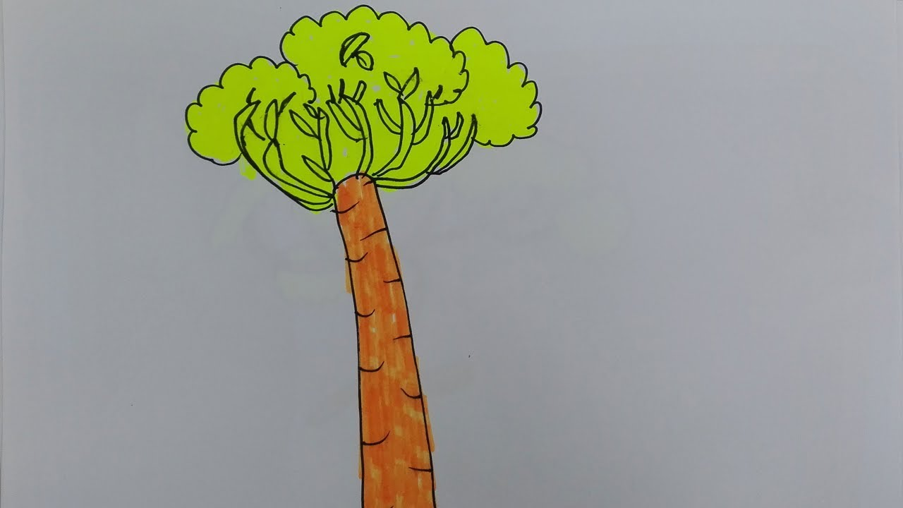 1280x720 How To Draw Baobab Tree Baobab Tree Drawings Draw An African Tree
