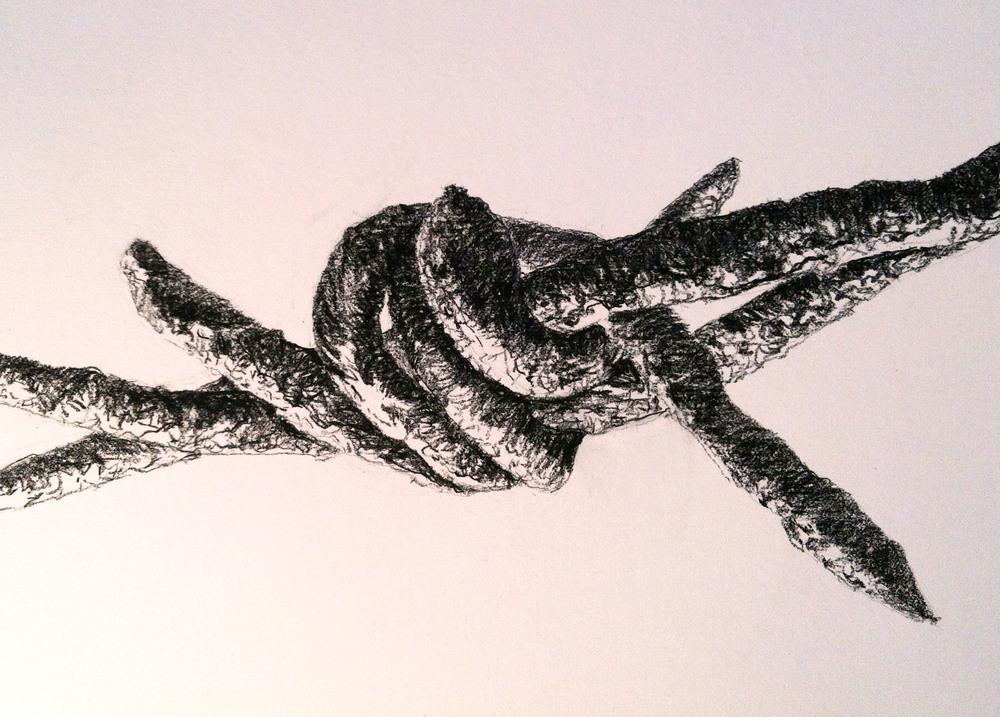 1000x717 Wires Phyllis Gordon Art