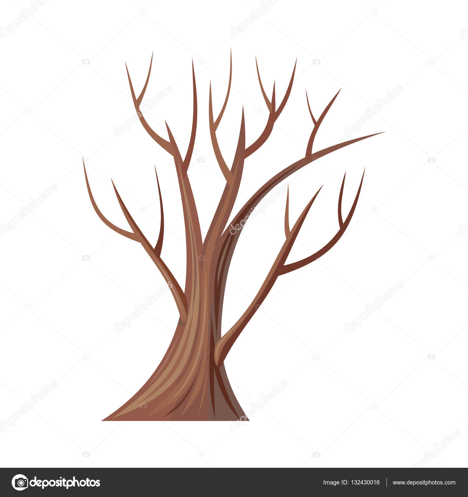 1600x1700 Bare Tree Without Leaves. Oak. Vector Stock Vector Robuart
