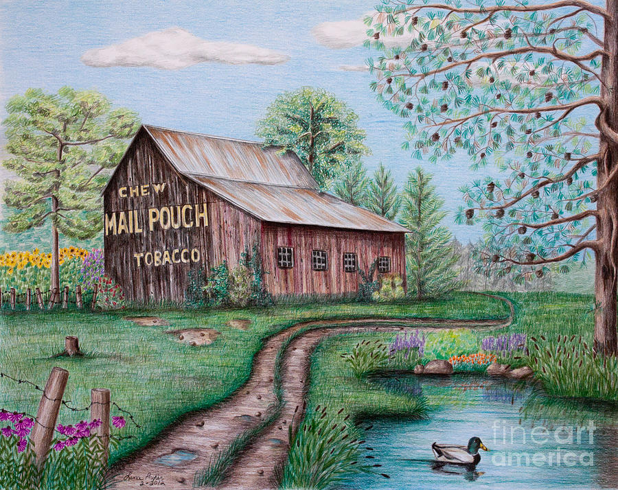 900x714 Mail Pouch Tobacco Barn Drawing By Lena Auxier