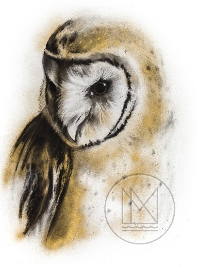 800x1073 Barn Owl Charcoal Drawing With Gold Spray Paint Highlights