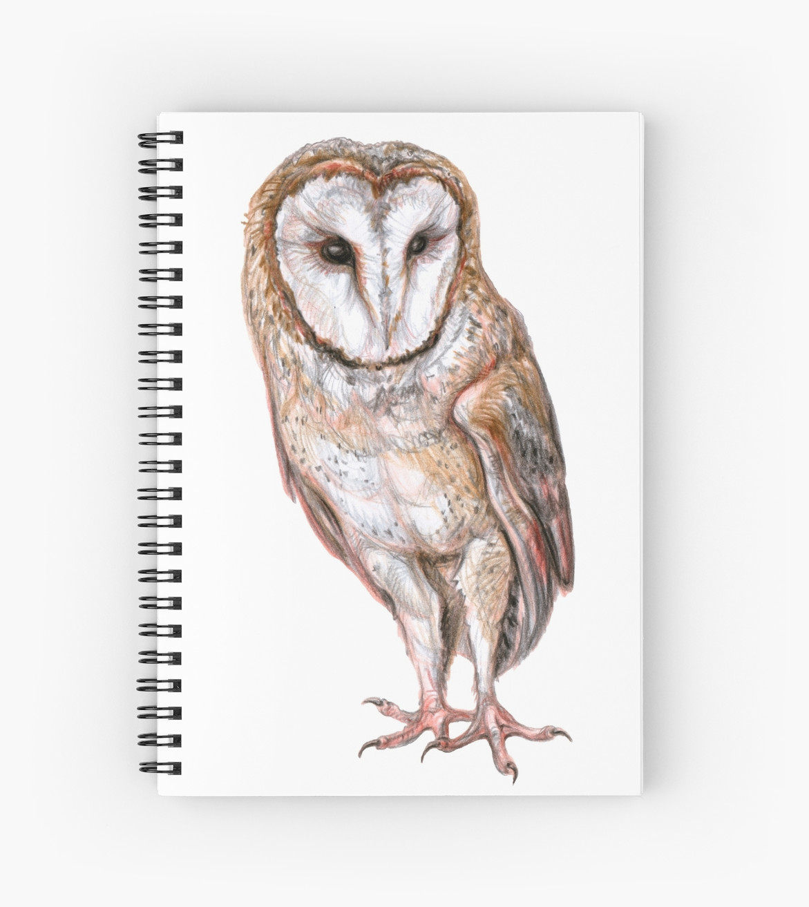 1171x1313 Barn Owl Drawing Spiral Notebooks By Stasia Ch Redbubble