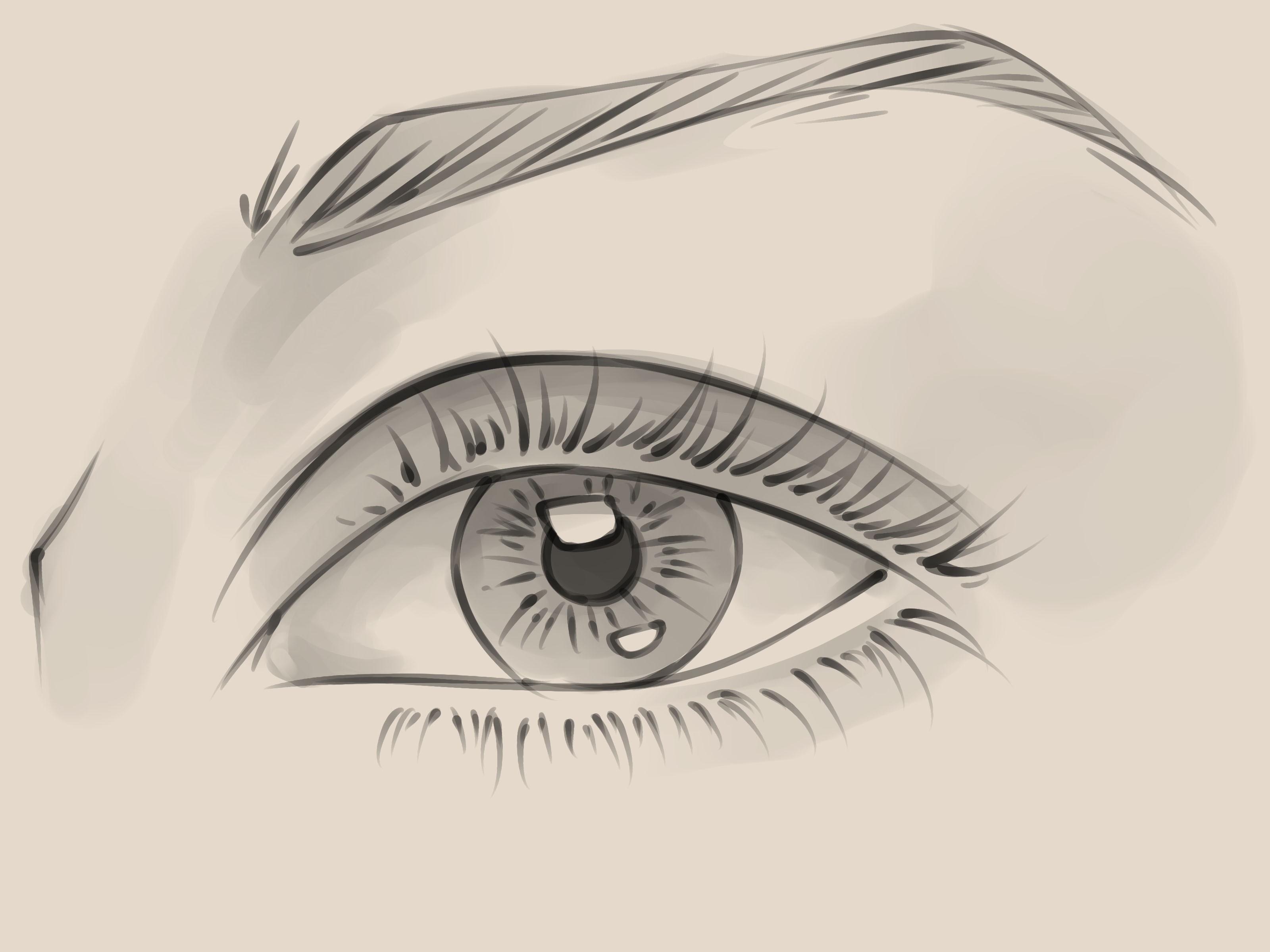 3200x2400 How To Draw A Realistic Female Eye 10 Steps (With Pictures)