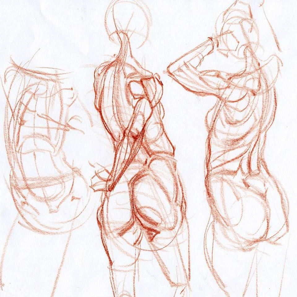 960x960 Basic Figure Construction Demos From My Inventive Drawing Class