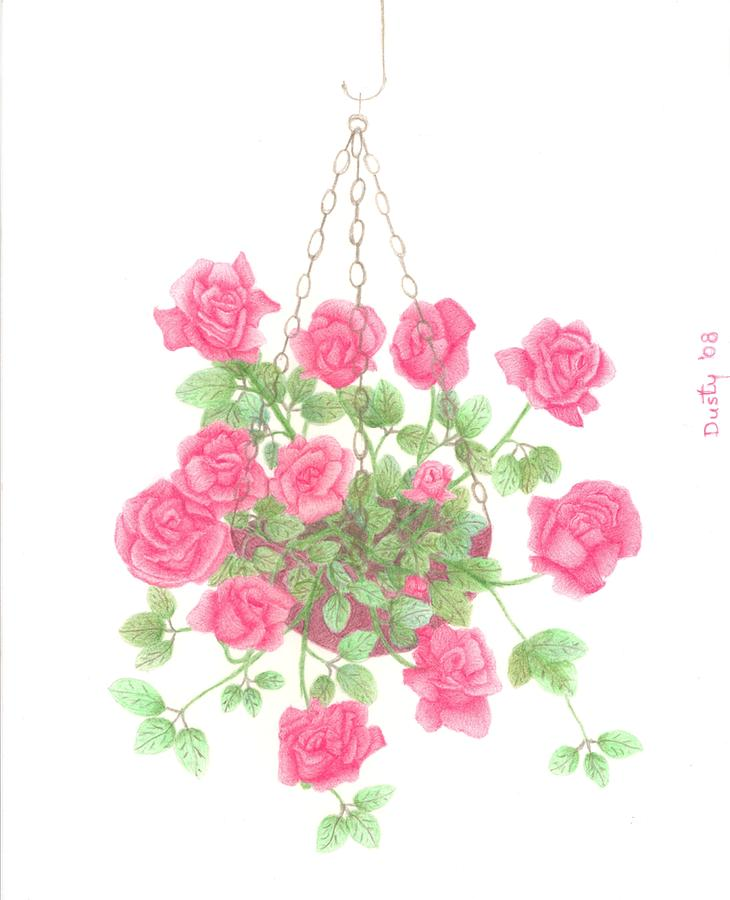 730x900 Hanging Basket Of Roses Drawing By Dusty Reed