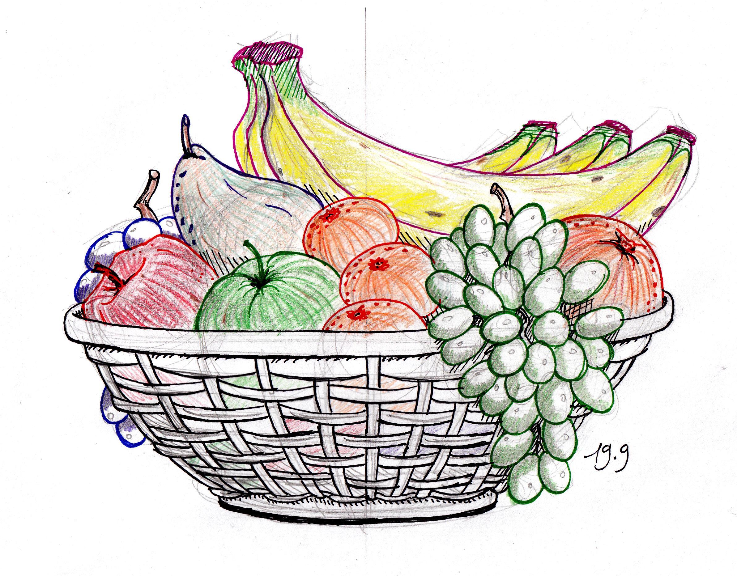 2384x1864 Sketches Of Fruits Baskets Vegetable Basket Pencil Sketch