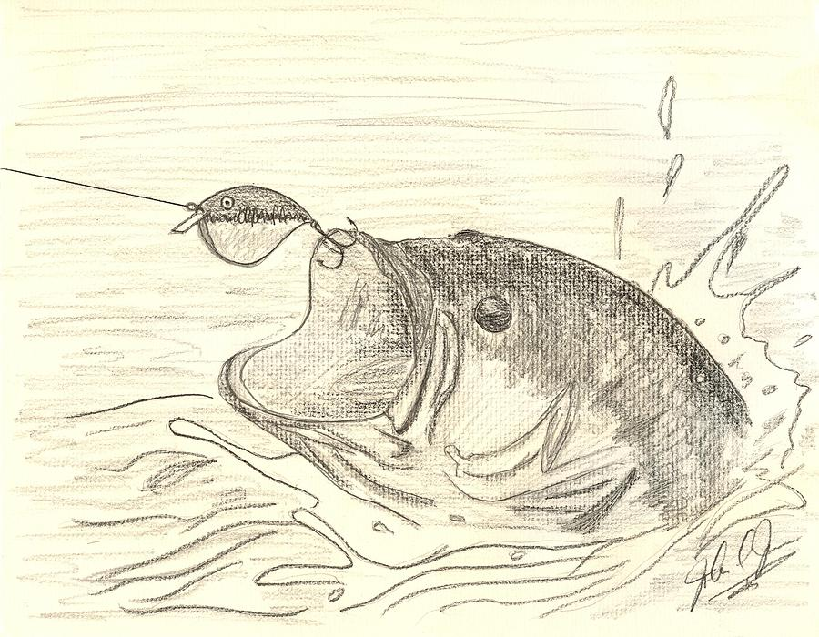 900x700 Bass Fishin Drawing By John Jones