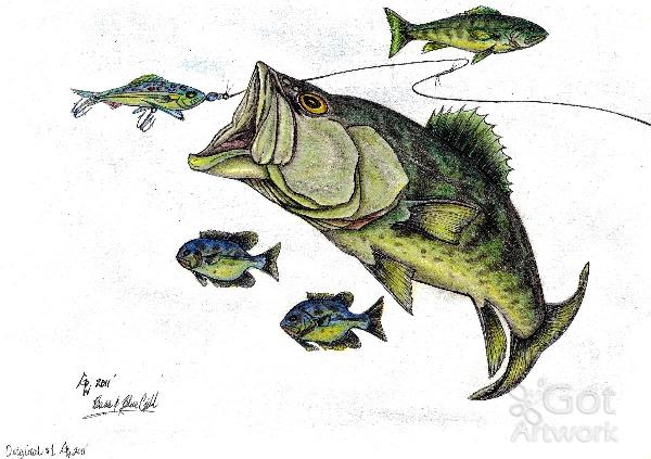 600x423 Big Bass And Bluegill Fishing Original Drawing Drawing By Gene