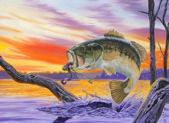 550x400 American Bass Fishing Art Is So Bad It's Good