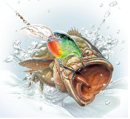 415x380 Catching A Bass
