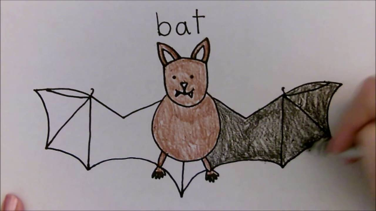 1280x720 Bat Directed Drawing For Kids