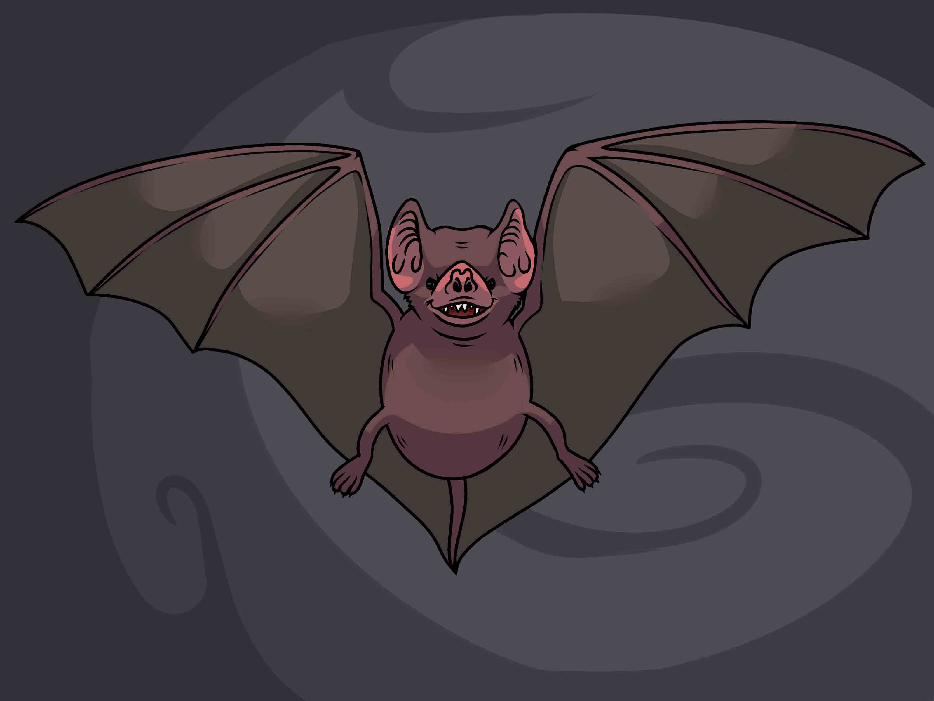 3200x2400 How To Draw A Bat (With Pictures)