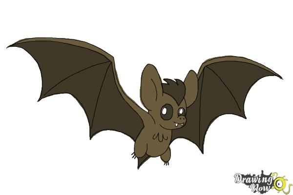 600x400 How To Draw A Bat Step By Step