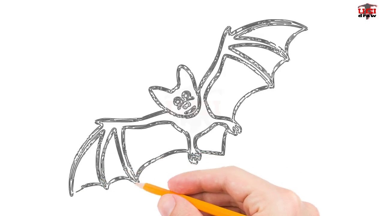 1280x720 How To Draw A Bat Step By Step Easy For Beginners Simple Bats