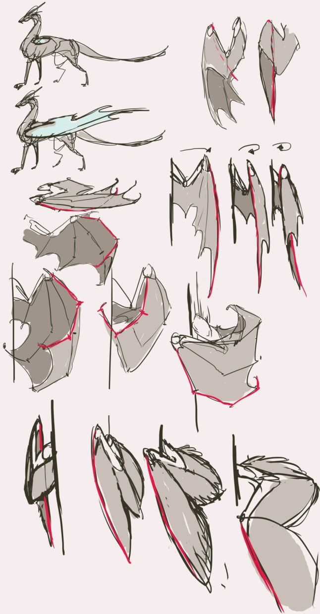 646x1238 89 Best Draw(Dragons) Images On Drawing Ideas, Art