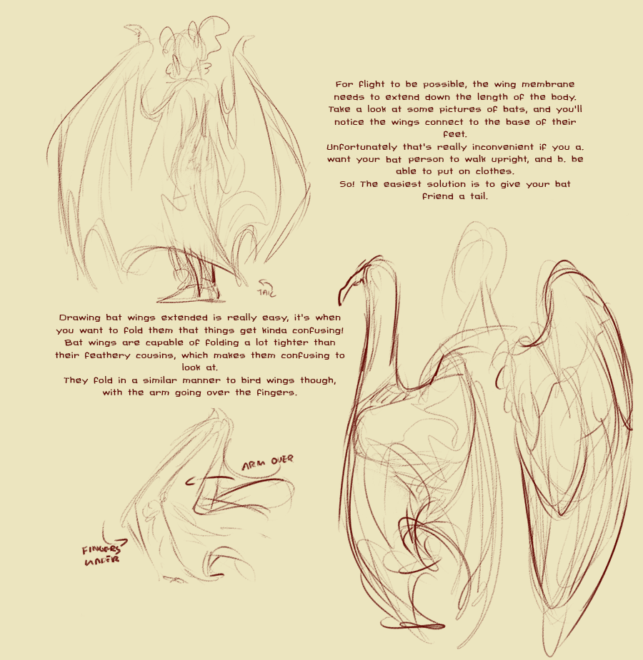 Bat Wings Drawing at GetDrawings.com | Free for personal use Bat ...