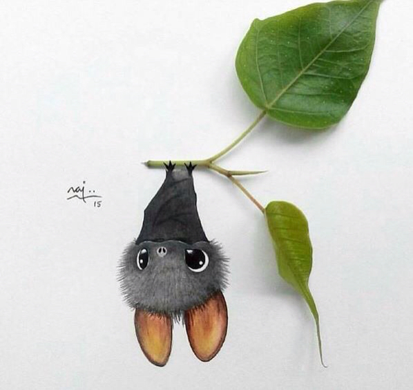 598x565 More Cute Bat Drawings ) Animal Concepts Bats