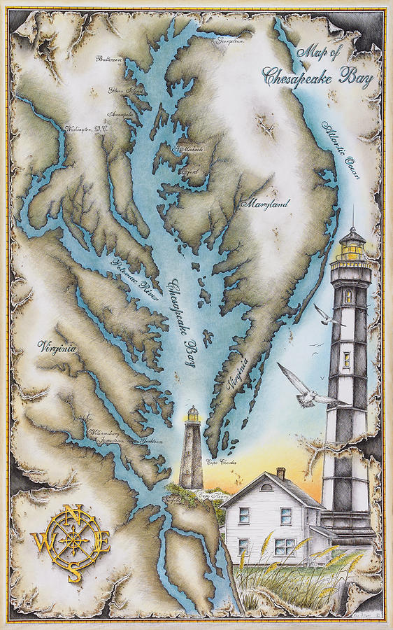 562x900 Map Of Chesapeake Bay Drawing By Mike Williams