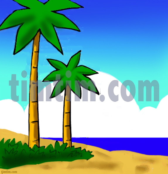 574x594 Free Drawing Of A Palm Beach From The Category Climate Amp Nature