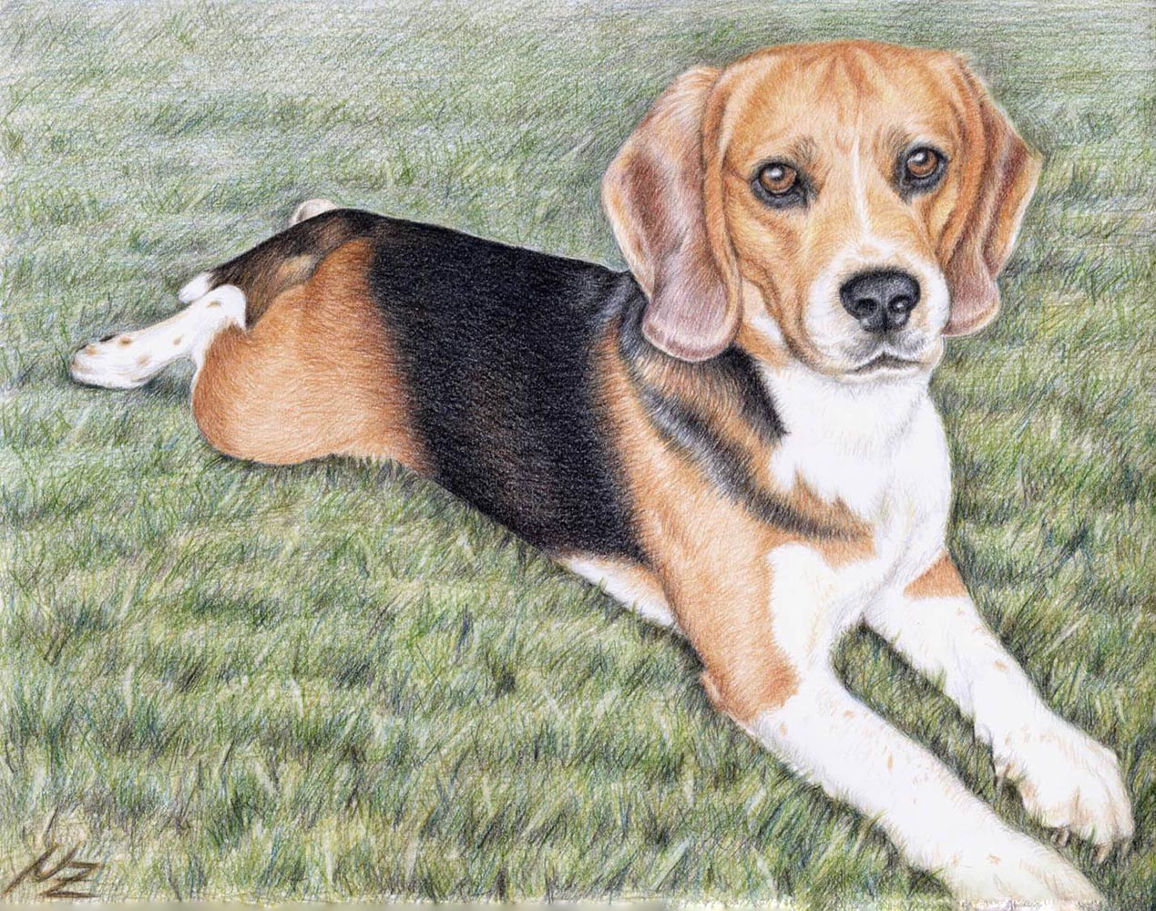 Beagle Dog Drawing at GetDrawings.com | Free for personal use Beagle ...