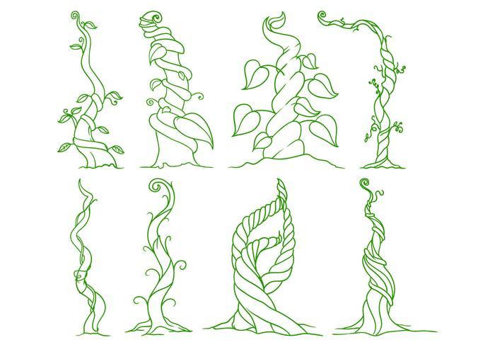 700x490 Free Beanstalk Illustration Vector