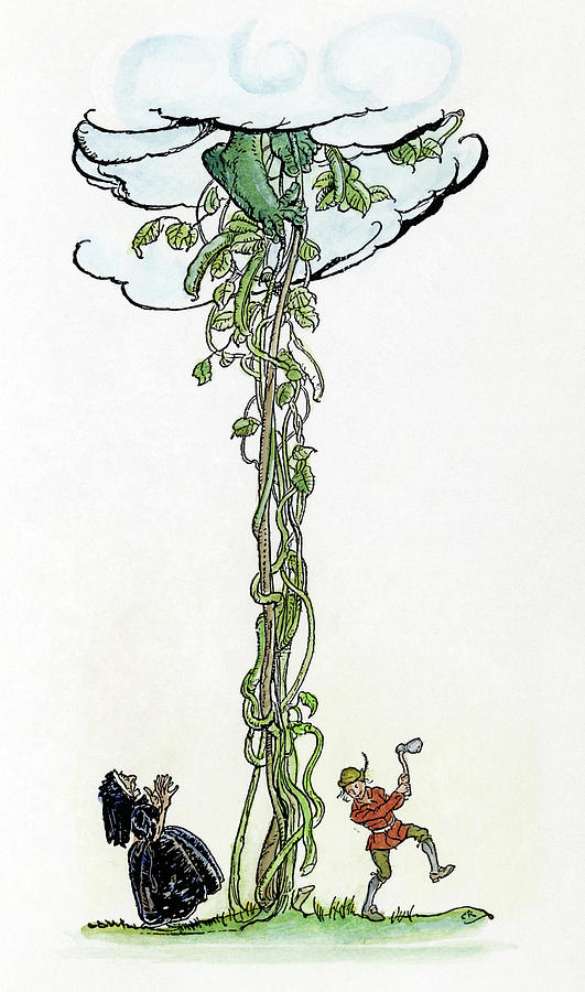 531x900 Jack And The Beanstalk Drawing By Granger