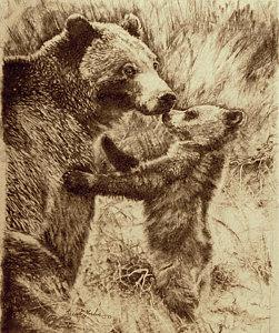 251x300 Bear Cub Drawings