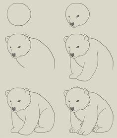 236x278 How To Draw Polar Bear Cub By Hauru7 On Dibujos