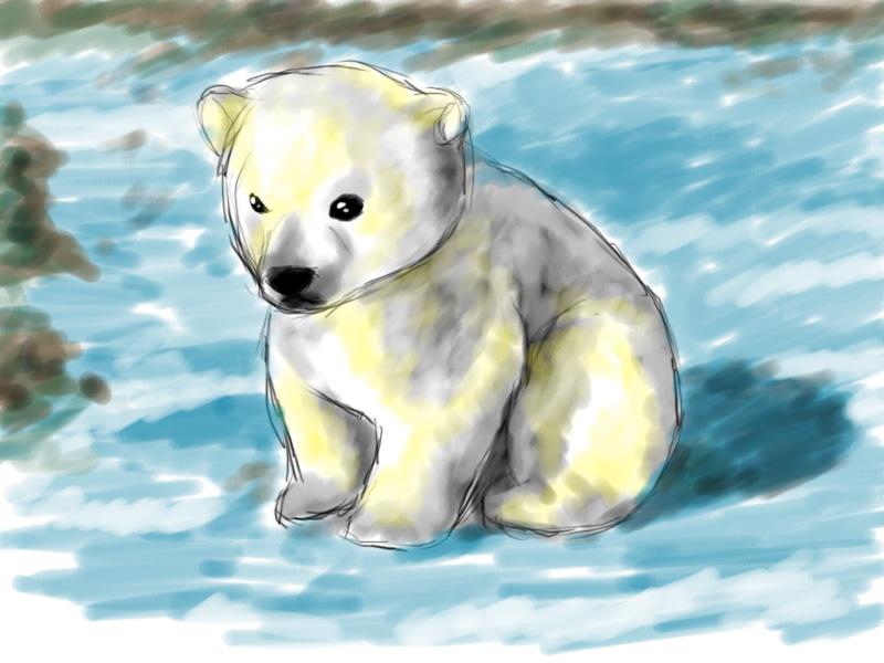 800x600 Polar Bear Cub 3 By Emiiriorochi