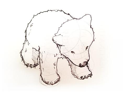 470x358 Sketchy Day Bear Cub