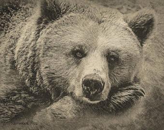 340x270 Bear Drawing Etsy