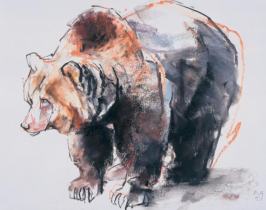 900x710 European Brown Bear Drawing by Mark Adlington