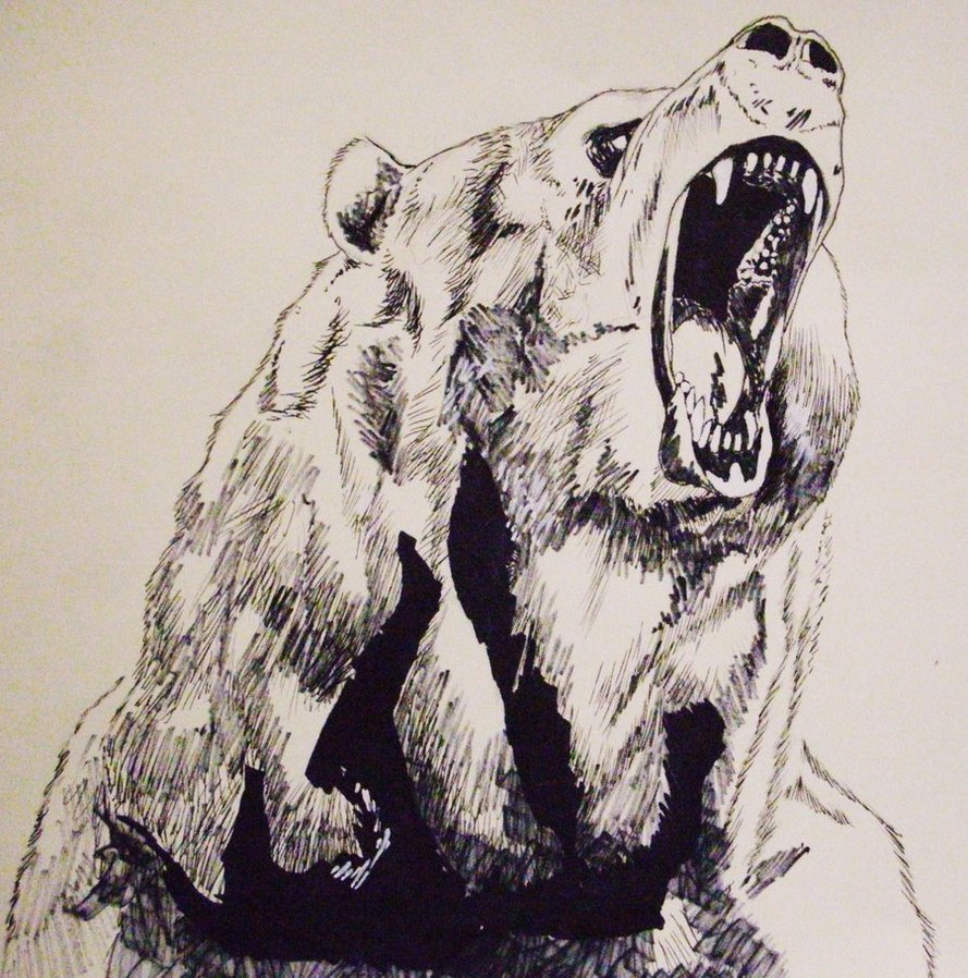 889x898 Drawn Grizzly Bear Roar