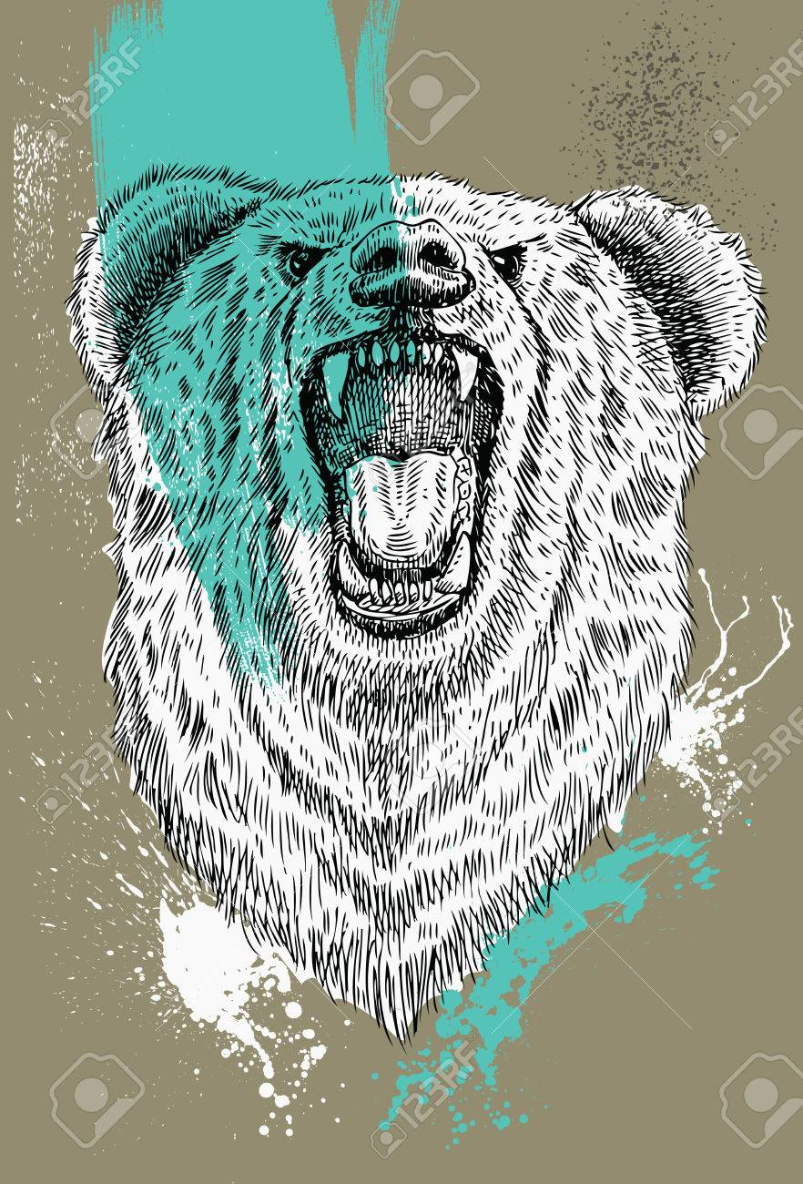 882x1300 Hand Drawn Roaring Bear With Splash Watercolour, Bear Head, Vector