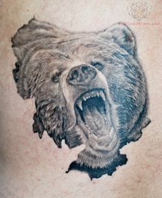 236x289 Bear Sketches Realistic Bear Drawing By Vempiretattoo