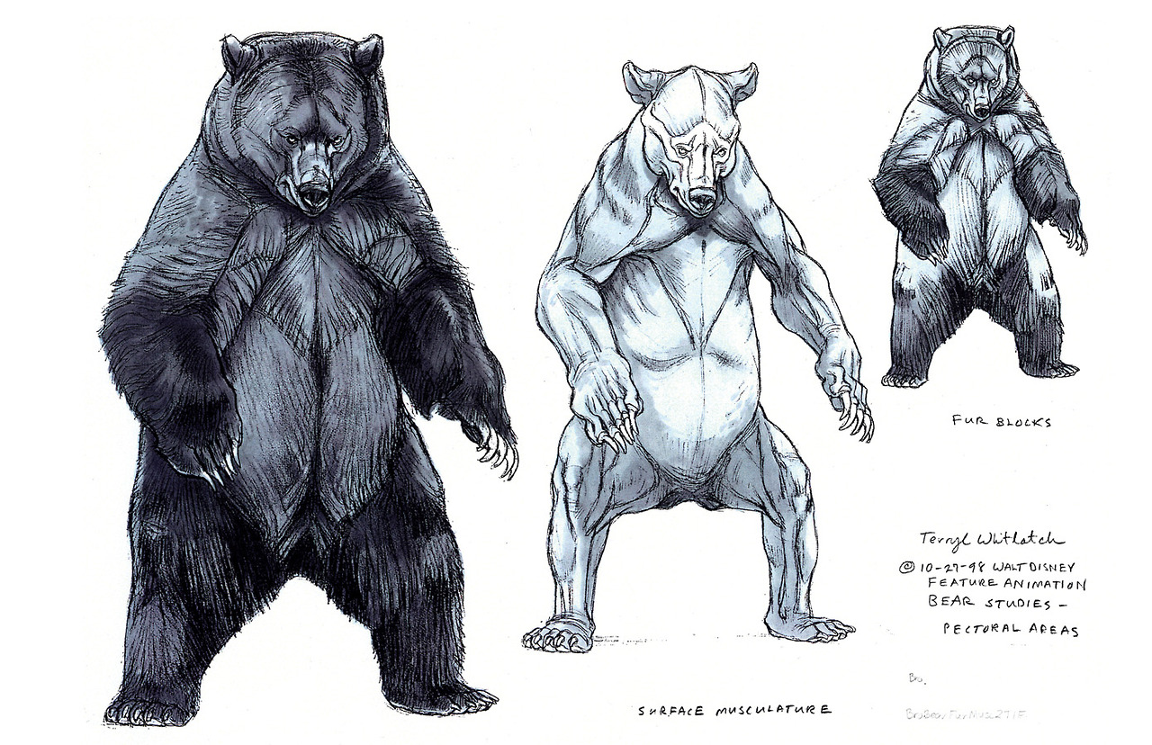 Bear Standing Up Drawing at GetDrawings.com | Free for personal use ...