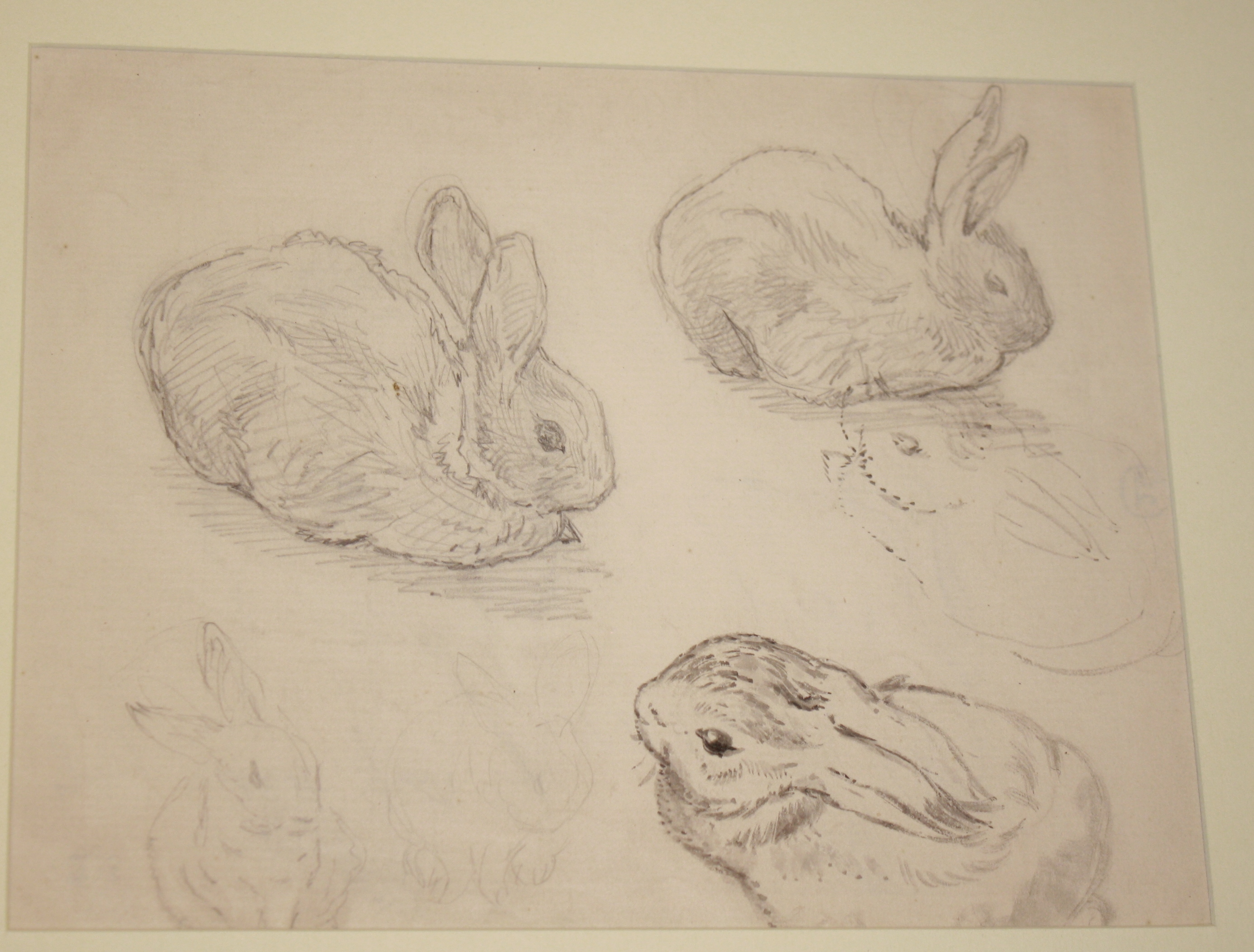 2773x2106 Drawings The Charming Little Bunny