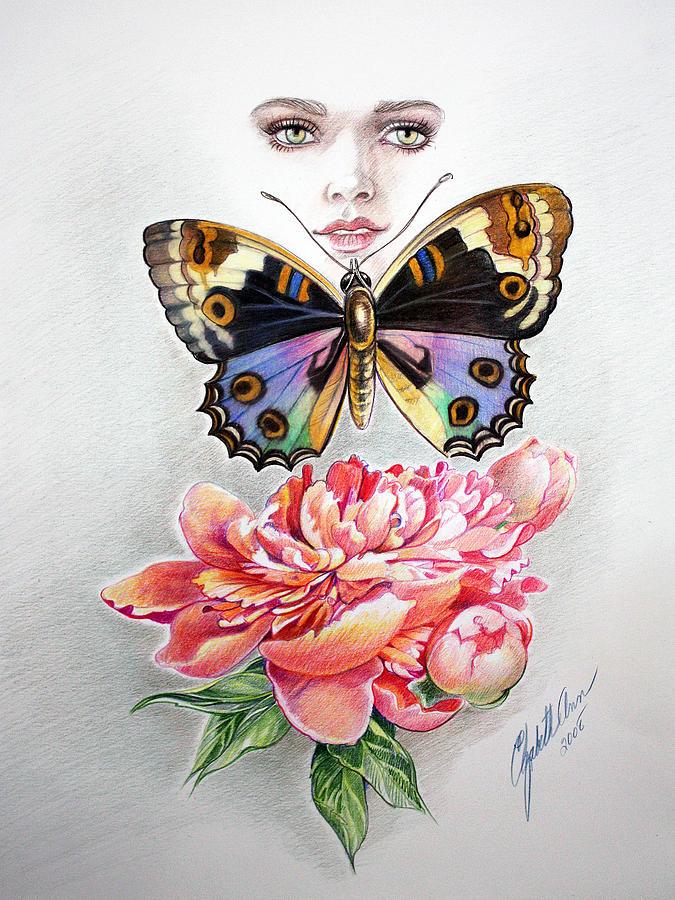 675x900 Beautiful Butterfly Drawing By Elizabeth Shafer