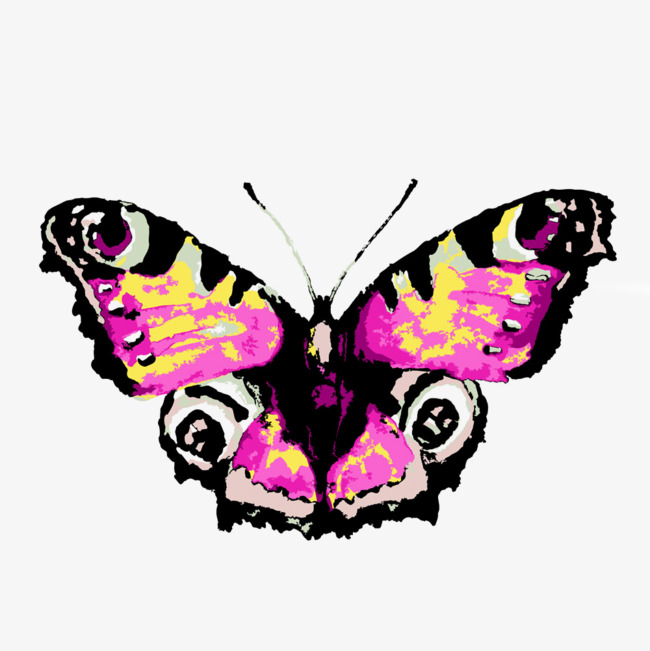 650x651 Beautiful Butterfly Illustration, Color Ink Watercolor Butterfly