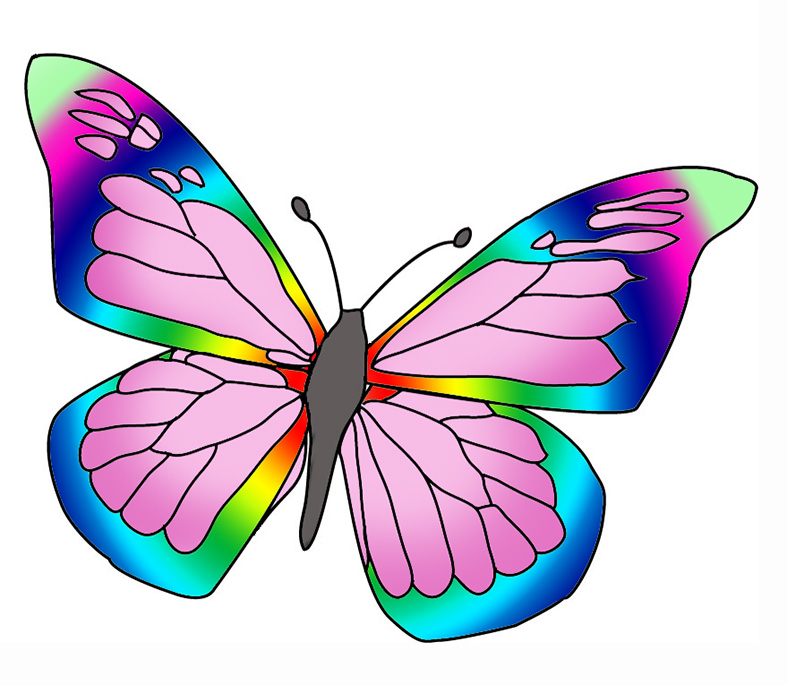 787x685 Beautiful Butterfly Images