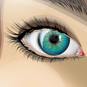 368x368 Beauty Eyes Drawing Free Vector Download (98,673 Free Vector)