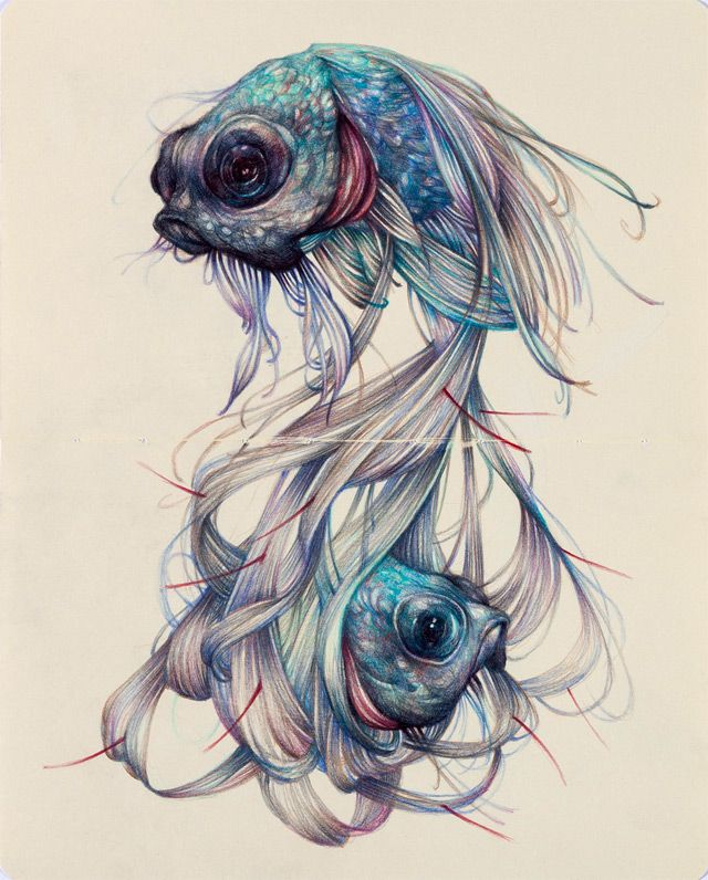 640x796 Beautiful Colored Pencil Drawing By Marco Mazzoni. Ooohh
