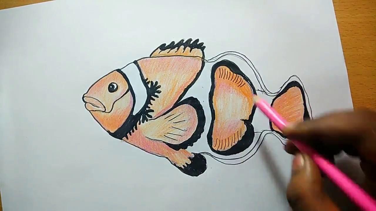 1280x720 Beautiful Fish Drawing