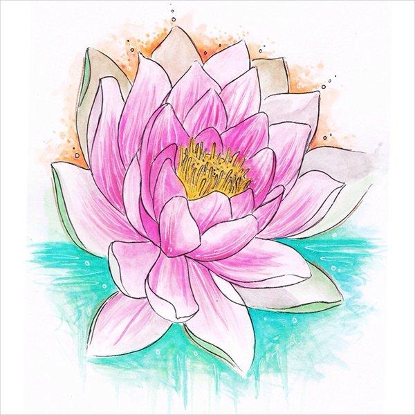 600x600 Flower Drawings Free Amp Premium Templates