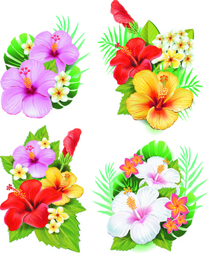 302x368 Beautiful Flowers Drawing Free Vector Download (104,941 Free