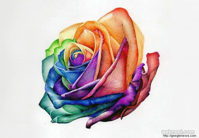 660x458 Beautiful Flower Drawing