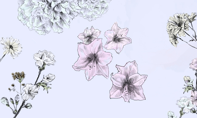 650x391 Blooming Garden Learn How To Draw Flowers In Just 4 Steps!